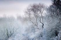 droomlandschap sneeuw en ijs